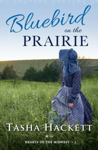 bluebird on the prairie