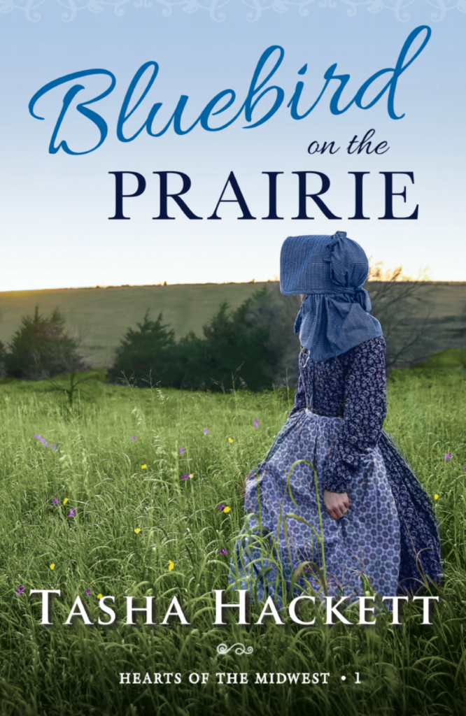 bluebird on the prairie